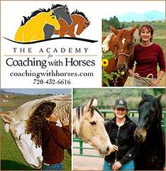 The Academy for Coaching with Horses