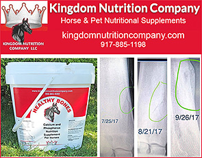 Healthy Bones for Horses by Kingdom Nutrition Company
