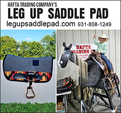 Leg Up Saddle Pad