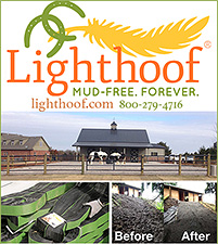 Lighthoof Mud Control for Horse Pastures