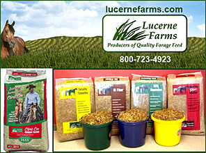 Lucerne Farms Horse Forage