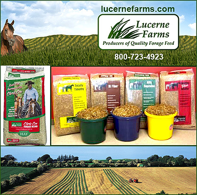 Lucerne Farms Producers of Quality Forage Feed for Horses.