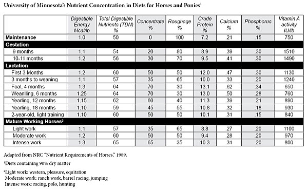 Nutrient Concentration for Horse Diets