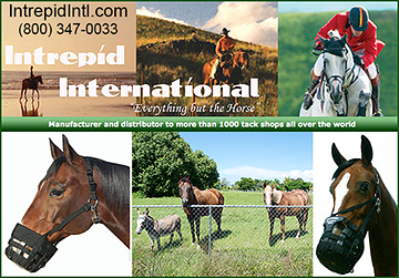 Intrepid International Horse Products