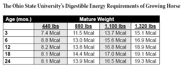 Digestable Energy Requirements of Growing Horses