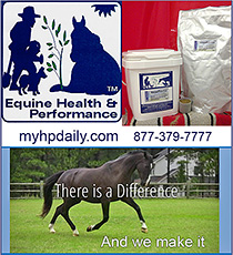 Equine Health and Performance