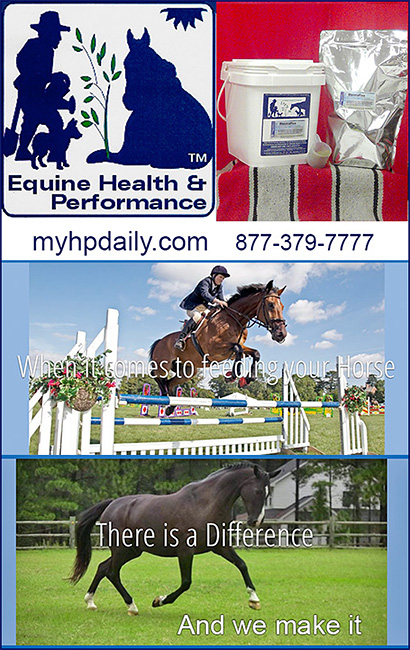 Equine Health and Performance Horse Electrolytes