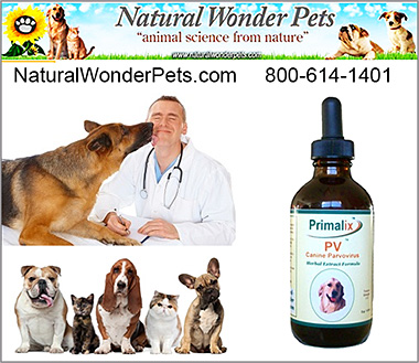 Natural Wonder Pets Dog Health Products