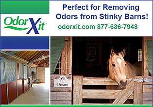 OdorXit Horse and Pet odor deodorization