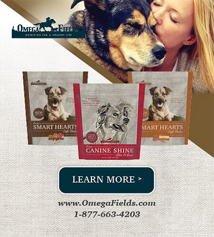 Healthy Dog Supplements from Omega Shine