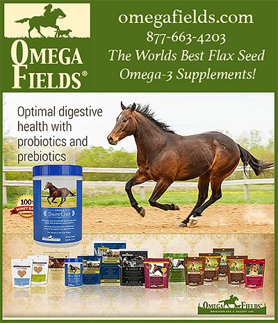 Omega Fields Sure Gut Horse Supplement