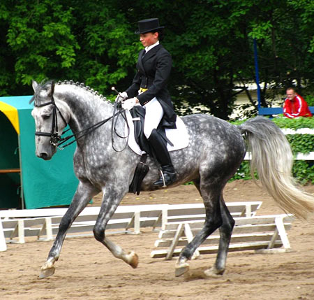 Jeannie Telstad riding Unipol,  Orlov Trotter