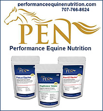 Performance Equine Nutrition