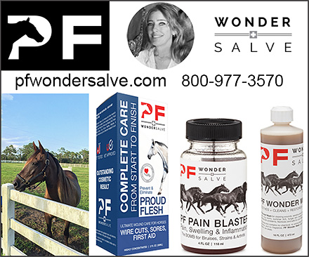 Horse Wound Products by PF Wonder Salve