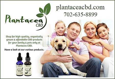 Plantacea CBD Hemp Products for Dogs