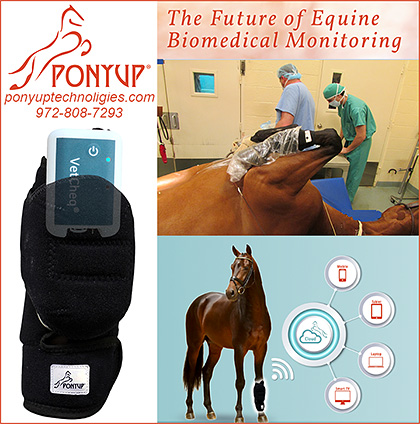 Equine Biomedical Monitor by Ponyup Technologies