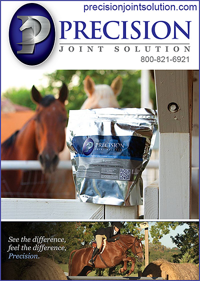 Precision Horse Joint Solution