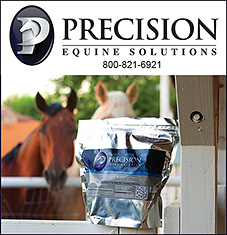 Precision Equine Solutions