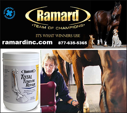 Ramard Equine Health Supplements