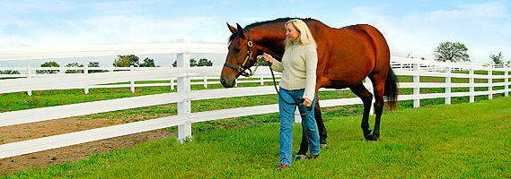 Plan your equine fencing now!