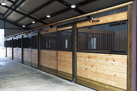 Provide plenty of ventilation  for health horses.