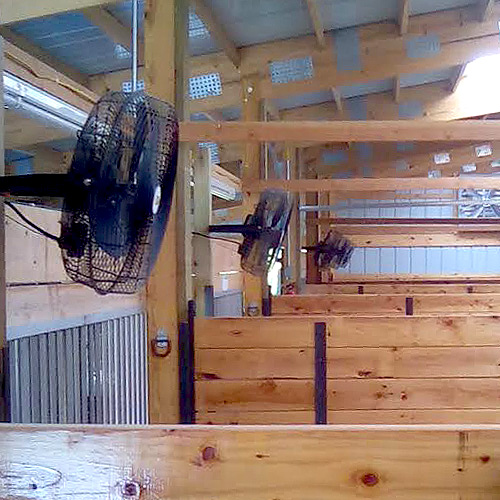 Barn Exhaust Fans : The best fan for horse stalls