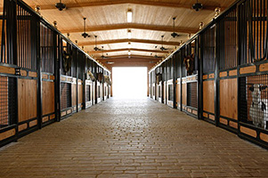Get Organized! Tips for Keeping the Barn and Tack Room Tidy