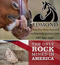 Redmond Rock Minerals and Salt for your horse!
