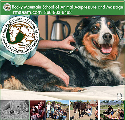 Rocky Mountain School of Dog Accupressure  and Canine Massage!