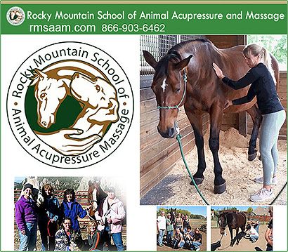 Rocky Mountain School of Horse Massage and Acupressure
