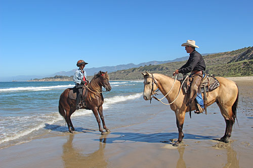 Backing into the surf was a good starting point for some horses.