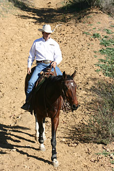 Trail - The trail is a great place to help this mare be aware of her feet.