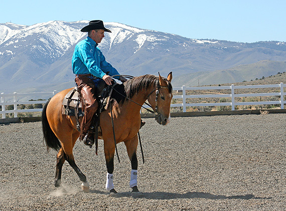 First teach your horse to yield the hindquarters while standing still.
