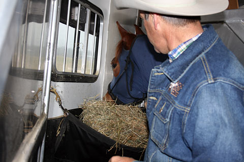 Manger – Plenty of hay in the manger will help my horse pass the time.