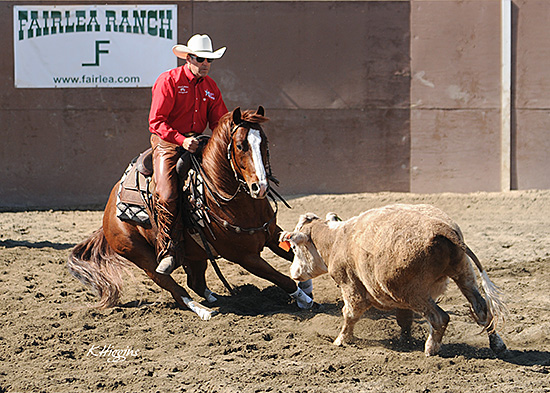 Making a Cow Horse Turn Photo by K Higgins