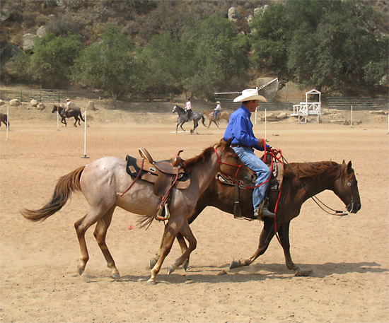Ponying another horse is a skill that every horseman should be comfortable with.