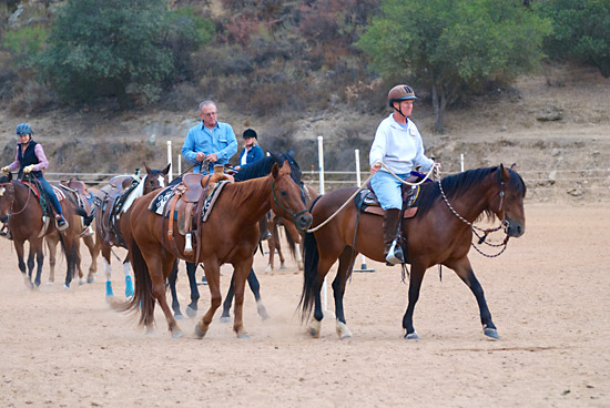 Students practice ponying a horse for the first time.