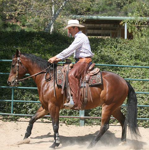 Correct; Backing up with short reins