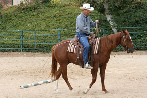 Be aware of how your horse handles the rope around his rump when moving to the left.