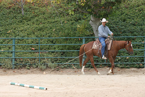 I allow my colt to pull the pole around to the right.