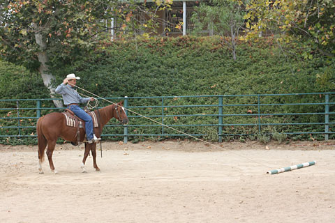 I am pulling the pole to myself - allowing my colt to observe its movement.