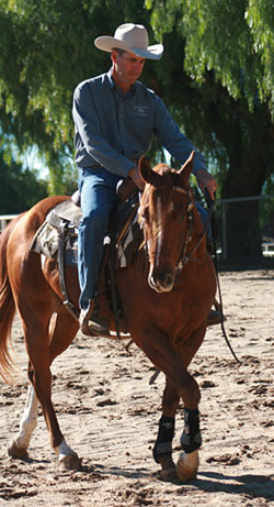Shoulders to the Left: I keep my colt counder bent to the right as he steps his shoulders over to the left.