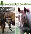 Horse Sarcoid Treatment