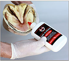 Med-i-sole Sticks to horse hoof tissue.