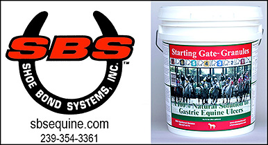 SBS Equine Starting Gate Granules for ulcer support of horses.