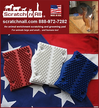 Scratch n All Horse Scratching Pad