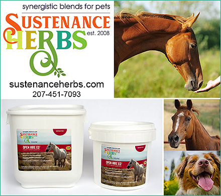 herbal health for horses