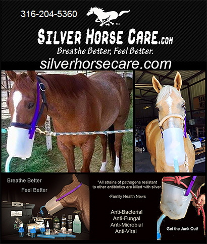 Respiratory Products for Horses