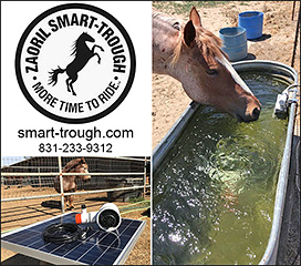 Smart Horse Trough Mosquito Pump