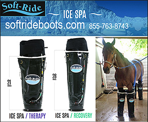 Ice Spa Cold Therapy Boots for Horses